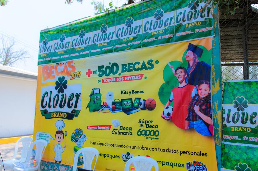 Becas Clover Brand 2019